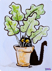 SerenaAzureth_ATC_BlackCat_Fern2 (SerenaAzureth) Tags: serenaazureth handdrawn sketch drawing atc artist trading card swapbot swap bot watercolor water color paint blackcat black cat kitty fern plant hiding