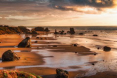 Face Rock Beach State Park (Manuela Durson) Tags: face rock facerock bandon beach state park scene sand rocks pacificocean pacific ocean sea water sunset sunsetoverwater sunsetoverocean oregon oregoncoast