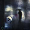 8-136313-17_IPA_Almudena_street (Mariano Belmar Torrecilla) Tags: ipa2017 honorablemención españa|murcia|murciac rain umbrella paraguas conceptual