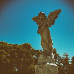 Francesca Camarda (aushiker) Tags: angel cemetery fremantlecemetery granite grave gravestone headstone memorial fremantle graves momuments urbanexploration