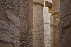 Coffee with Milk (Don César) Tags: luxor thebes egypt egipto africa middleeast mediooriente egiptian egipcio columns columnas tones brown cafe stone piedras architecture arquitectura karnaktemplecomplex pylons building
