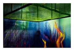 Rehab 2 (8) (Marie Hacene) Tags: rehab2 citéuniversitaire streetart artderue couleurs vert flamme bleu mur