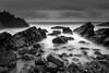 Wet Rocks (the governor) Tags: hartland quay devon bw