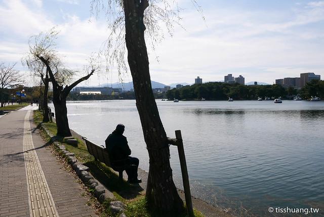 九州大濠公園-1150132