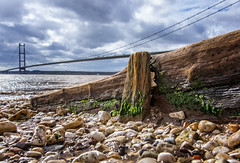 Humber Groin (POCKLINGTON CAMERA CLUB) Tags: wood shoreline neglect landscape bridge wooden humberbridge humber landscapes shore groin hessle sky river pebblebeach bridges weathered pebbles groins decay worn beach water