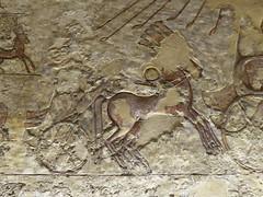 Chariot, Tomb of Meryre, Amarna (Aidan McRae Thomson) Tags: amarna tomb egypt ancient egyptian