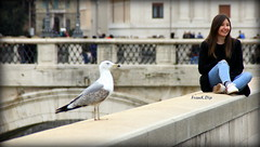 ... scatti rubati (FranK.Dip) Tags: frankdip roma gabbiano turista ragazza girl