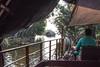 Navigating the Kerala Backwaters (amanda & allan) Tags: india alleppey kerala riceboat riceboats palmtrees palms backwaters veniceoftheeast