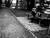 In the park on a bench (alexhesse.de) Tags: deutschland länder neujahr oldenburg travel park bench girl women blackwhite monochrome blury