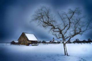 Country Life (Landleben)