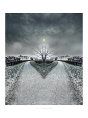 Il passaggio (Fiorenzo Delegà) Tags: specchio mirror sky clouds birds uccelli pareidolia tree mast shaft street train apple iphone 6 appleiphone6 crazygeniuses