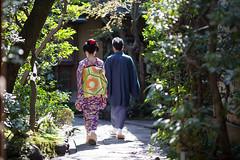 Minarai Style (walkkyoto) Tags: 見習い minarai 祇園甲部 gionkobu 舞妓 maiko 芸妓 geiko 京都 kyoto 日本 japan ef135mmf2lusm