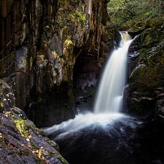 Hollybush Spout (burnsmeisterj) Tags: olympus omd em1 waterfall ingleton hollybushspout yorkshire yorkshiredales england river