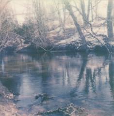 "Riverbend (dreamscapesxx) Tags: ""snapitseeit"" polavoid ""barrytonmi"" ""chippewariver"" wintry trees winter riverbend bright ""polaroidoriginals600film"" ""polaroidslr680"" instant polaroid"