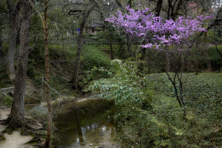 A Walk in the Park_6203