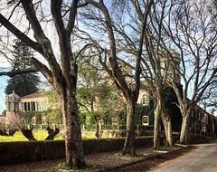 like a fairytale castle (AdeWinter) Tags: concordians architecture architektur tree