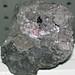 Fluorite-sphalerite (Bluffton, Ohio, USA) 1