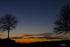 Anochece en Morella (chelocatala) Tags: cielo anochecer arbol