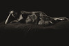 Aurélie Tattoo (landrebeatrice) Tags: femme portrait studio sensualité nudité sexy noiretblanc blackandwhite vintage
