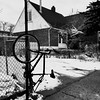 Il y a des erreurs ici... (woltarise) Tags: bicyclette maison ruelle neige hiver montréal rosemont quartier oubli