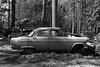 obsolescence (mojave1951) Tags: nikonf4 voigtlander40mmf2 fomopan400 rodinal blackandwhite blackandwhitefilm classiccars