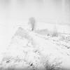 WINTER (NaKLISZY) Tags: droga analog mgla zima ilfordpan400 praktica snieg winter snow tree white highkey jasny bright painting cold fog road nowhere