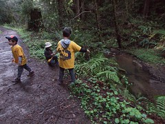 0811 Walk Away (mliu92) Tags: purisimacreek redwood preserve halfmoonbay hiking cubscouts calcifer son