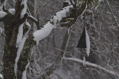 Winter Bell (brucetopher) Tags: snow winter blizzard bell buoy ice icy cold wintry blowingsnow sticky stick cling
