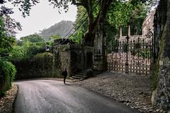 Entrance (Miguel.Galvão) Tags: sintra quinta regaleira piriquita galvão miguel pedro pires alentejo évora portugal urbanscape road gate mystic fog castelo mouros castle mourish