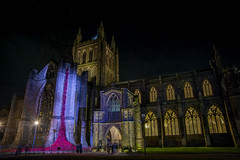 DSC_0599 (burton_ii) Tags: hereford cathedral night nightphotography poppy weepingwindow poppies herefordcathedral