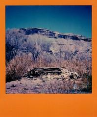 verde river, march 19 (EllenJo) Tags: polaroid impossibleproject theimpossibleproject verderiver clarkdalearizona lowertapcorap march19 2018 ellenjoroberts eklen jo polaroid600 colorframe