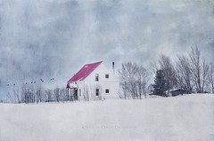 1st day of Spring (Jocelyne Deneau) Tags: winter winterlandscapes snow frost outdoors cold temperature countryside canada