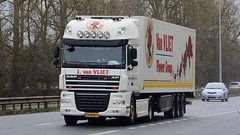 16-BDK-7 (panmanstan) Tags: daf xf wagon truck lorry commercial international dutch flower freight transport haulage vehicle holland a63 everthorpe yorkshire