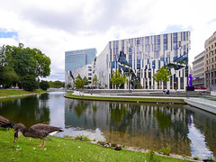 Düsseldorf - Hofgarten (gernotp) Tags: chordatiere deutschland düsseldorf düsseldorfurlaub ente natur nordrheinwestfalen ort park tiere urlaub vogel wasser wirbeltiere grl5al grv4al
