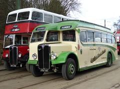 Classic Pair (Terry Pinnegar Photography) Tags: beamish museum countydurham bus vintage cumbriaclassiccoaches aec regent utc672 eastlancs bamberbridgemotorservices regal jtb749 burlingham florencemotors morecambe