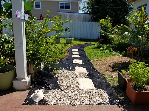 The next garden project in progress