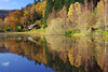 Polney loch and the wee house (eric robb niven) Tags: ericrobbniven scotland dunkeld perthshire polneyloch trees