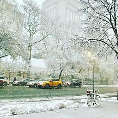 Spring Snow (DOTCALM9) Tags: snow aprilsnow nyc ues newyorkcity 2018 iphone7 clarendon yorkavenue bicycle taxi instagram slush blizzard trees rushhour spring springsnow manhattan rockefelleruniversity