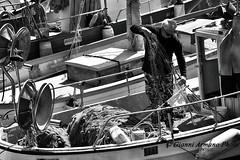 E' una fatica inutile pescare senza amo e imparare senza libro (Gianni Armano) Tags: e' una fatica inutile pescare senza amo e imparare libro foto gianni armano photo flickr reti da pesca
