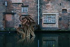Urban Wildlife (Apionid) Tags: tentacles canal birmingham industrialarchitecture bicycle nikond7000 gimp