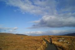 DSC02512 (margaret.metzler) Tags: ireland countydonegal donegal glenveagh glenveaghnationalpark nationalpark autumn hiking path trail 2017