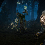 The Witcher 3: Wild Hunt / In The Woods thumbnail