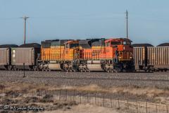 BNSF 9343 | EMD SD70ACe | BNSF Orin Subdivision (M.J. Scanlon) Tags: bnsf bnsf9343 bnsf9981 bnsfcsbmphh062a bnsforinsub bnsforinsubdivision burlingtonnorthernsantafe business csbmphh csbmphh062a cnank canon capture cargo coal coalcountry commerce conversecounty digital emd eos engine freight haul horsepower landscape locomotive logistics mjscanlon mjscanlonphotography merchandise mojo move mover moving outdoor outdoors photo photograph photographer photography picture powderriverbasin powderrivercoal rail railfan railfanning railroad railway sbmphh sd70ace sd70mac scanlon sky steelwheels super track train trains transport transportation tree upcnank upcnank928 wow wyoming ©mjscanlon ©mjscanlonphotography