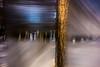 20180304-144 (sulamith.sallmann) Tags: landschaft pflanzen analogeffekt baum blur botanik bäume effect effects effekt filter folie folientechnik forest landscape natur nature pflanze plants tree trees unscharf wald sulamithsallmann