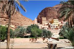 Igmir (mhobl) Tags: mosque moschee igmir village douar palmtrees oasis antitatlas morocco maroc ouedsmouguene