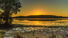 Sunrise Waterscape (Merrillie) Tags: daybreak woywoy landscape nature australia foreshore newsouthwales earlymorning nsw brisbanewater morning dawn coastal water sky waterscape sunrise centralcoast bay outdoors