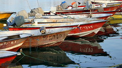 The Harbour (2) (Mahmoud R Maheri) Tags: harbour harbor bushehr iran boats persiangulf sea water motorboats parked
