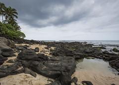 Laniakea Headlands (fantommst) Tags: lisaridings fantommst laniakea turtle beach honolulu oahu hawaii hi usa us sea seascape ocean pacific cloudy sand rock shelf tide empty