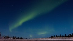 The Path to The Skies (Dhari .K ALFawzan) Tags: photography auroraborealis sky astrophotography fairbanks canon alaska arctic earth cold snow landscape landscapephotography northernlights stars night outdoor explore nightphotography nightscape aurora