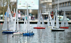 Model Yachts (Allan Jones Photographer) Tags: yachts modelyachts modelboats plymouth models regatta plymouthcitycentre devon uk boating hobbies pastime competition allanjonesphotographer canon5div canonef135mmf2lusm